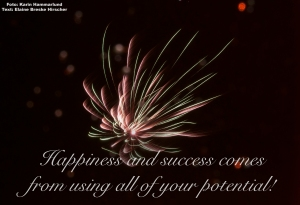 Happiness and success comes from using all of your potential!